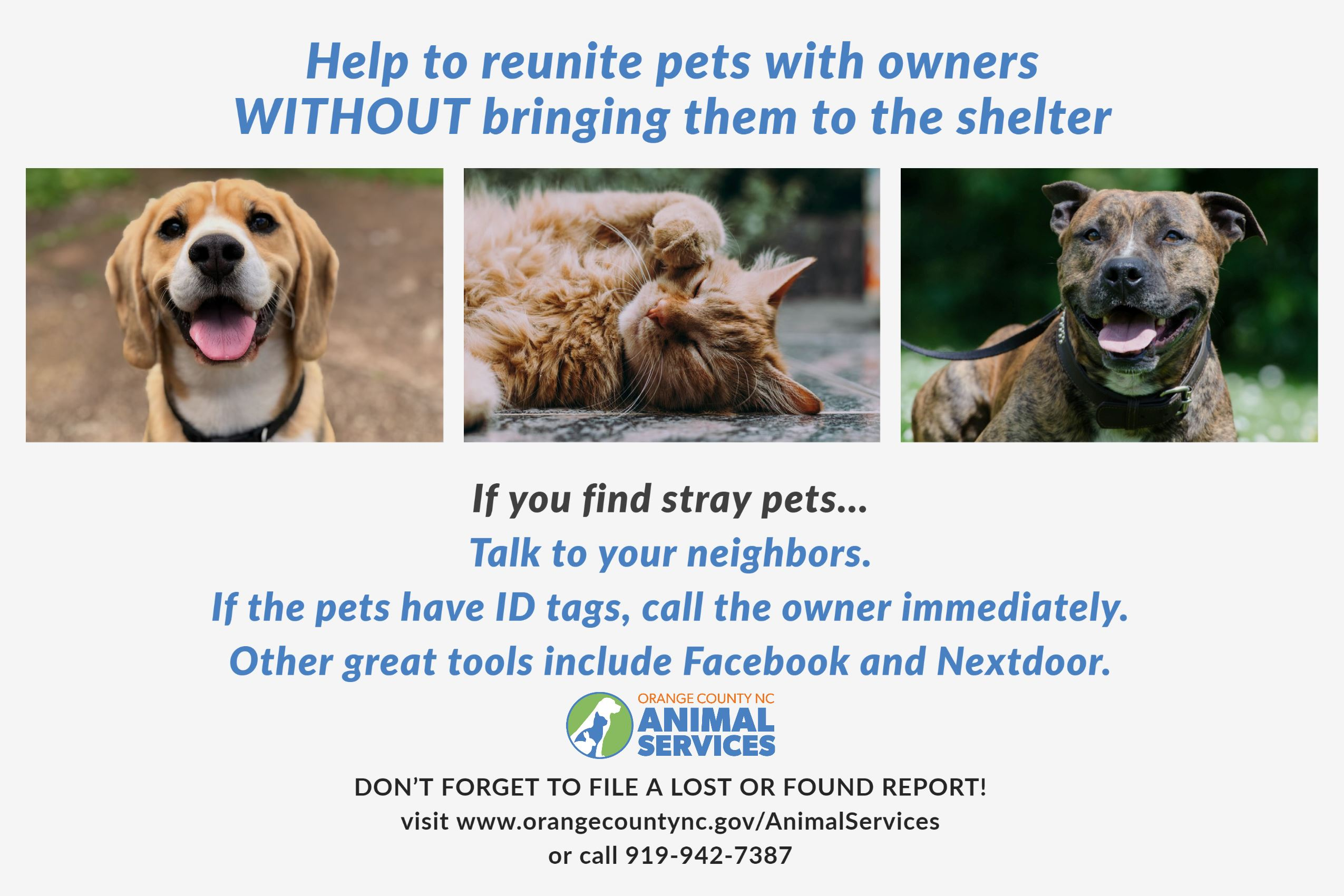 Help animals find their owners