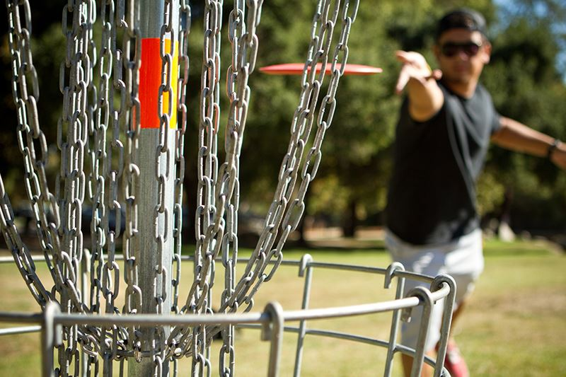 Disc Golf two Opens in new window