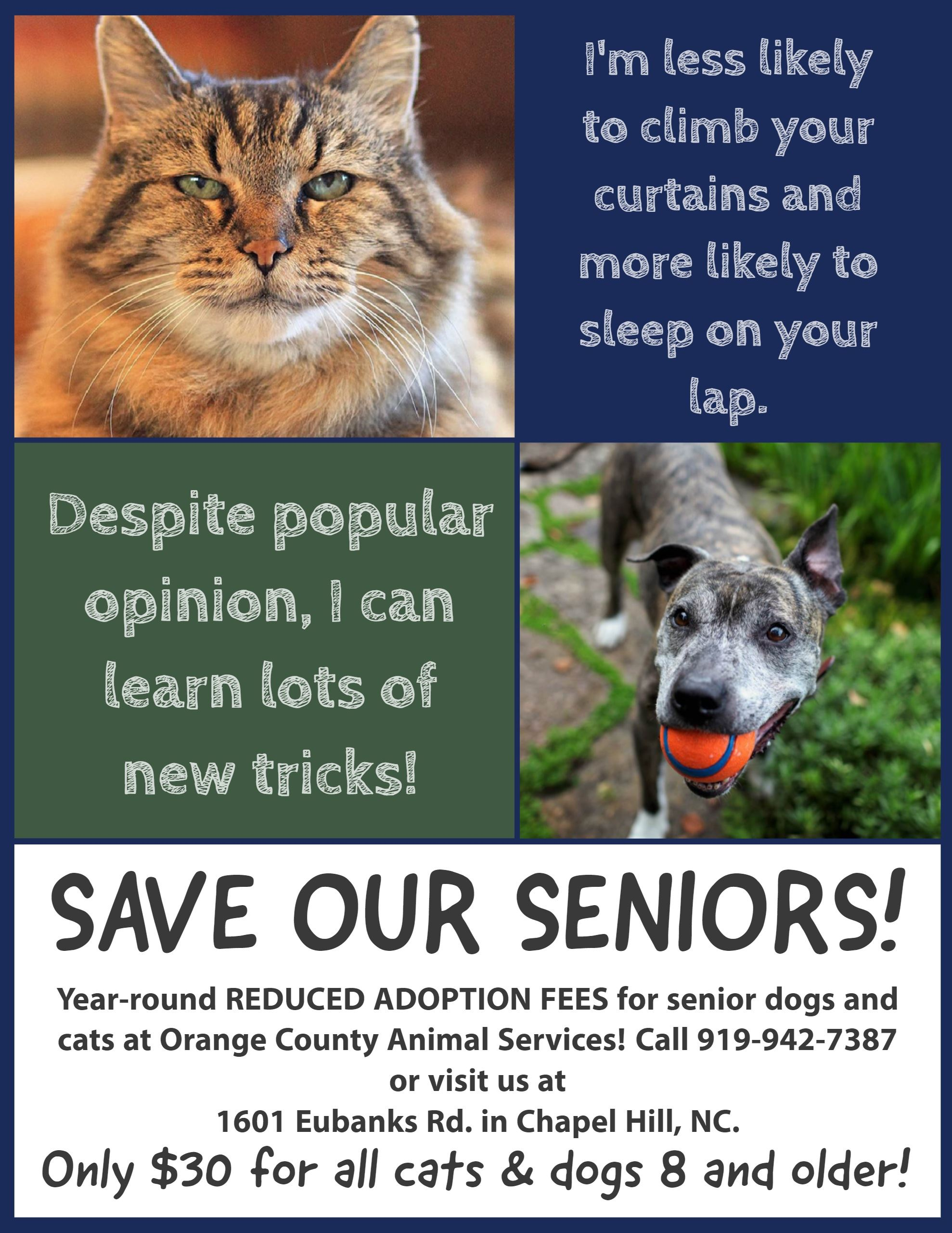 SaveOurSeniors