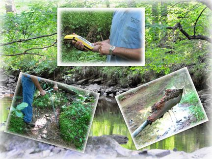 Collage of stream inspection activities
