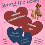 Valentine Adoption Special