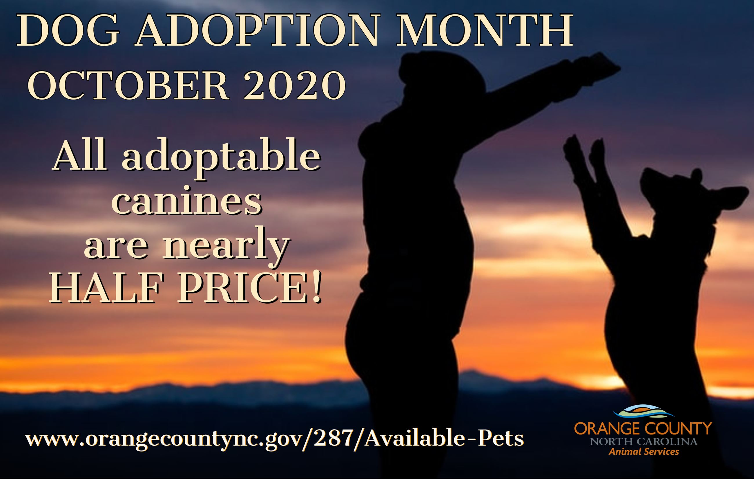 Dog Adoption Month 2020